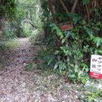「御嶽」それは沖縄で呼ばれている聖地であり、癒しの空間としても注目