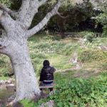 海からの風と美しい海岸線、「垣花樋川」日本名水百選に選ばれているんです。