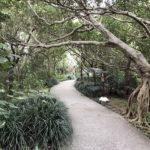首里城内最大の祭祀空間「京の内」神聖な御嶽が数多くある場所